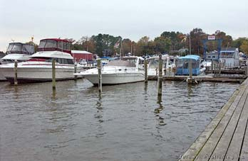 Lee's Marina, Northeast River, Charlestown, MD Thumbnail
